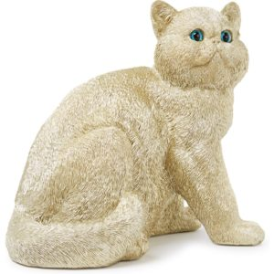 &Klevering Exotic Shorthair spaarpot